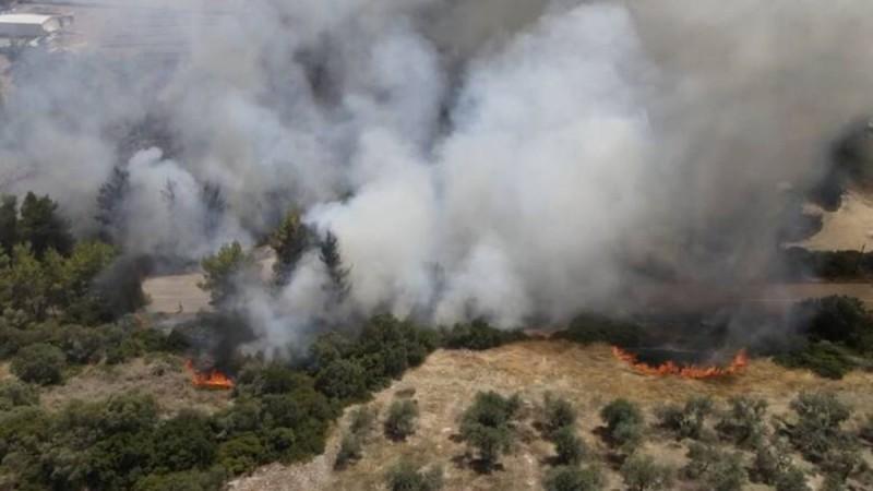 Φωτιά στη Μεσσηνία: Ισχυρές δυνάμεις στην περιοχή