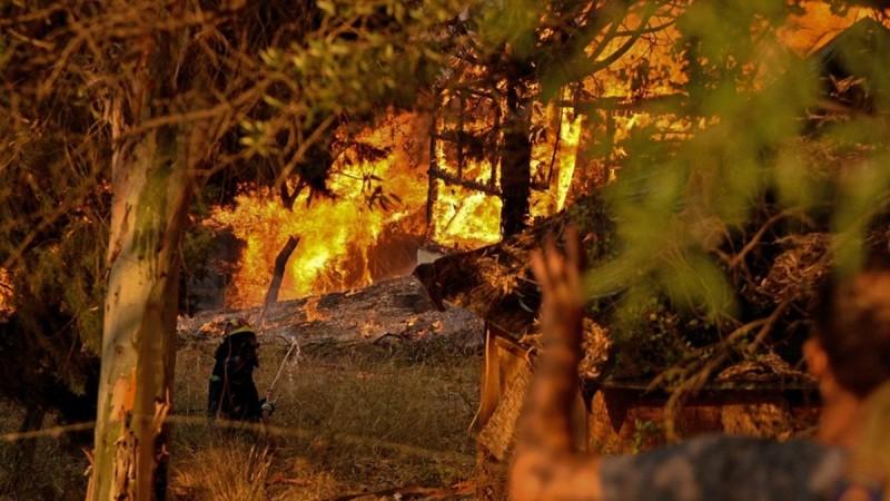 Φλέγεται και η Εύβοια σε δύο μέτωπα: Πυρκαγιά στα Κριεζά, επικίνδυνη φωτιά και στη Λίμνη Ευβοίας! Εκκενώνονται οικισμοί