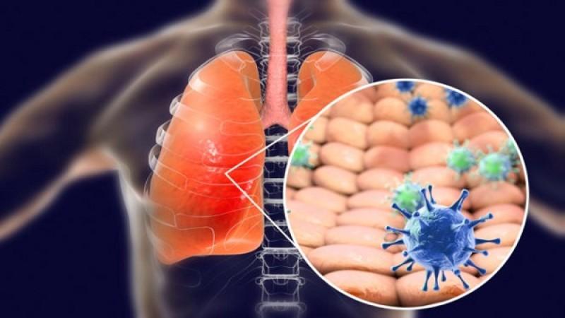 7 φυτά και βότανα που θεραπεύουν τις λοιμώξεις του αναπνευστικού και καταπραϋνουν τους πνεύμονες