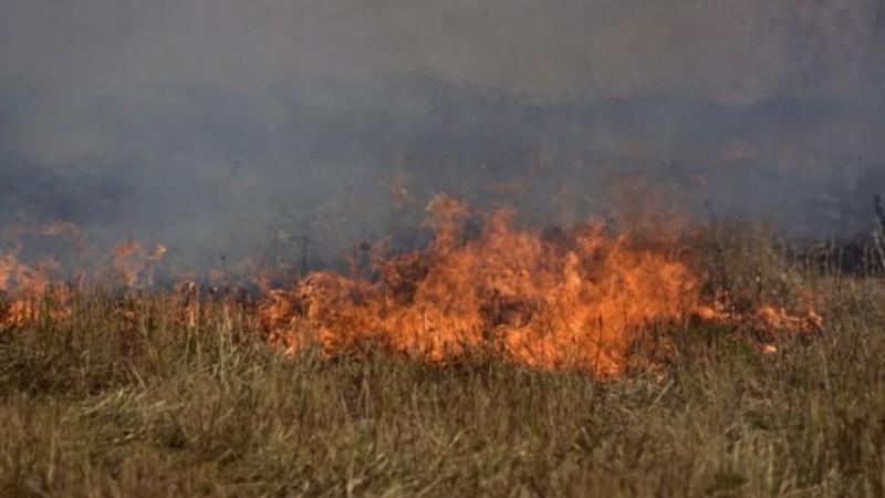 Τραγωδία στα Φάρσαλα: Έβαλε φωτιά σε ξερά χόρτα και απανθρακώθηκε
