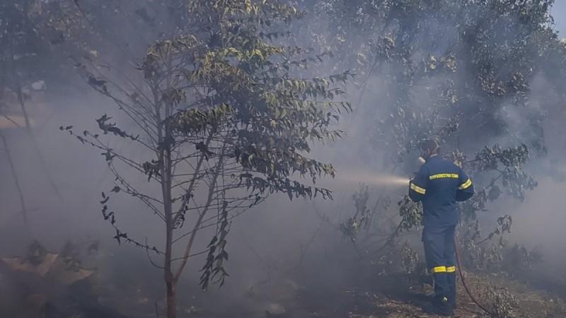 Φωτιά στον Κάλαμο - Ενεργό μέτωπο και στην Πάρνηθα