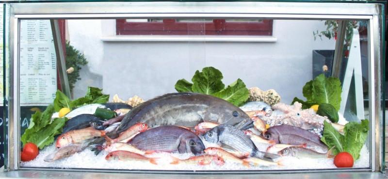 θαλασσινά ψαροσαβούρας