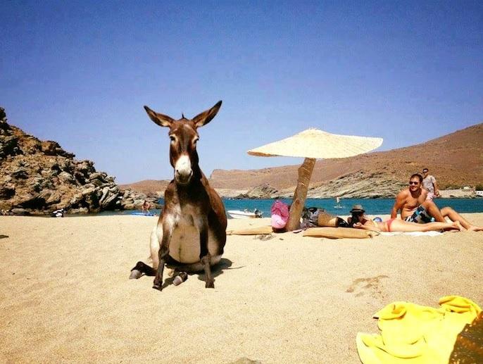 O Αύγουστος είναι ο απόλυτος μήνας του υπέροχου ελληνικού ...